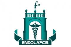 d7cb4c76422392c7c3901e1c4a54daa1_endolapcir